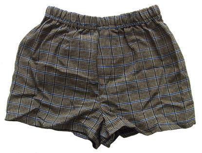 Изображение Трусы-шортики (коричневые с синей полоской)