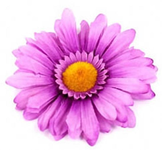 Изображение Заколка - цветок для волос (сиреневая ромашка)