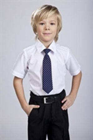 Изображение для категории Рубашки для мальчиков