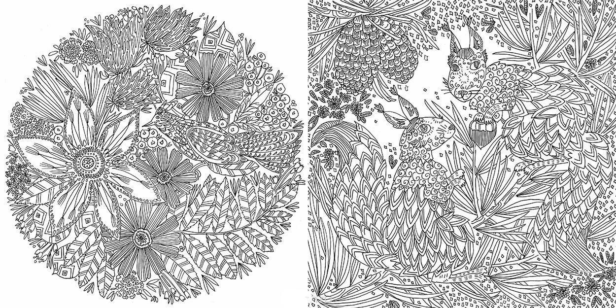 Изображение Лес-чародей. Раскрась свой мир и добавь жизни цвета